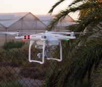 drone-neighbor