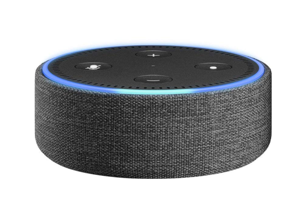 Amazon Echo Dot Case