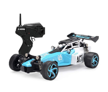 best-budget-RC-model-buggy