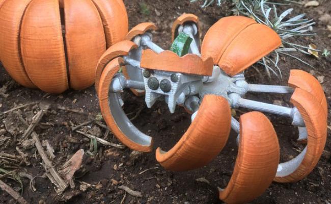 Transformer Pumpkin Spider