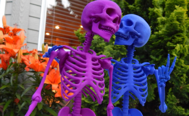 Articulated Skeleton Couple