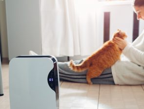 6 Best Smart Air Purifiers of 2019