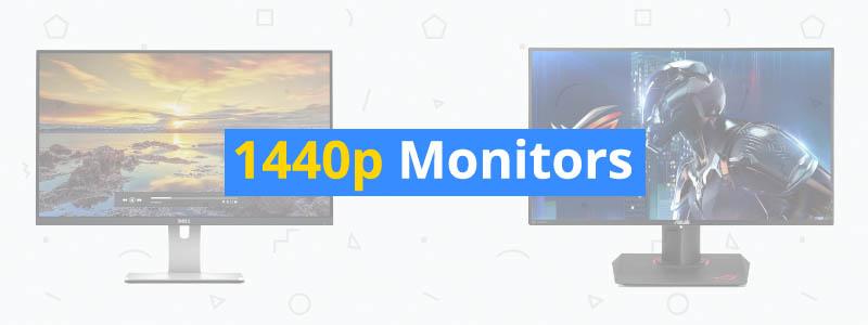 5 Best 1440p QHD Monitors