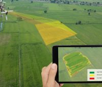 drone-mapping-agriculture-ndvi