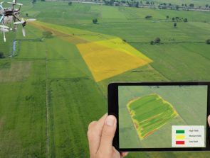 NDVI Cameras for Drones