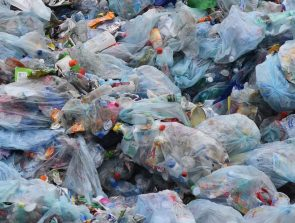 Can Plastic Bags Be Recycled?