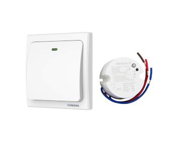Acegoo Wireless Lights Switch Kit