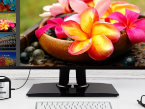 5 Best Office Monitors