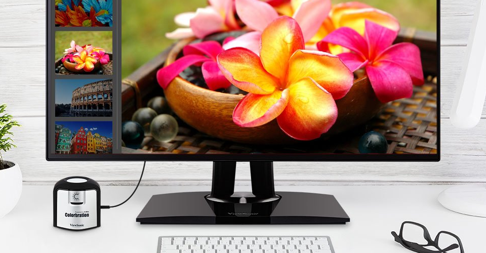 5 Best Office Monitors