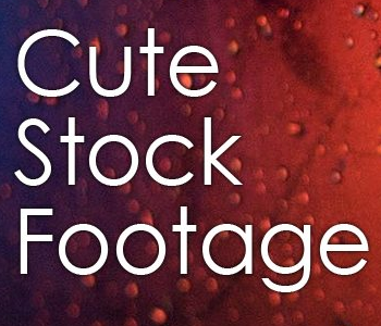 Cute Stock Footage