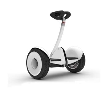 """Segway Ninebot 10.5"""" S Smart Transporter"""