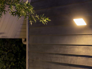 A Detailed Guide to Every Philips Hue Lightbulb – Comparison
