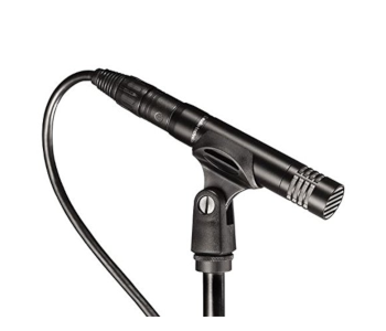 AT2021 Small Diaphragm Condenser Mic