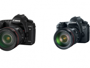 Canon 6D vs Canon 5D Mark ii: Differences and how do they compare?