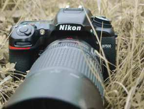 6 Best DSLR Under $1,000 in 2020