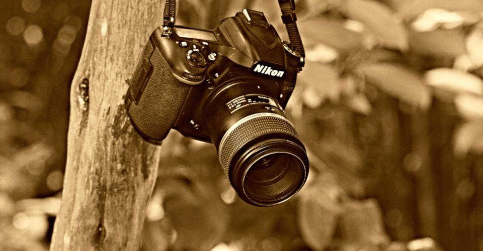 6 Best Lenses for Nikon D750 in 2020