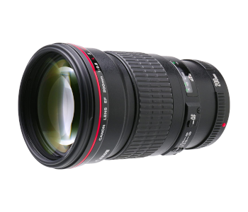 best-value-prime-lens-for-canon-camera
