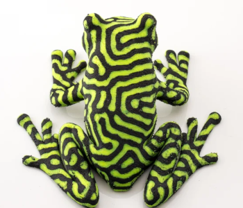 2-Color Tree Frog